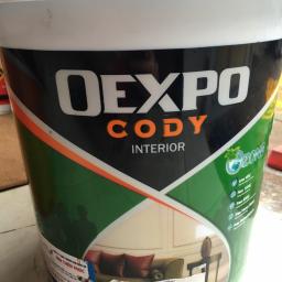 Sơn phủ nội thất Oexpo Interior
